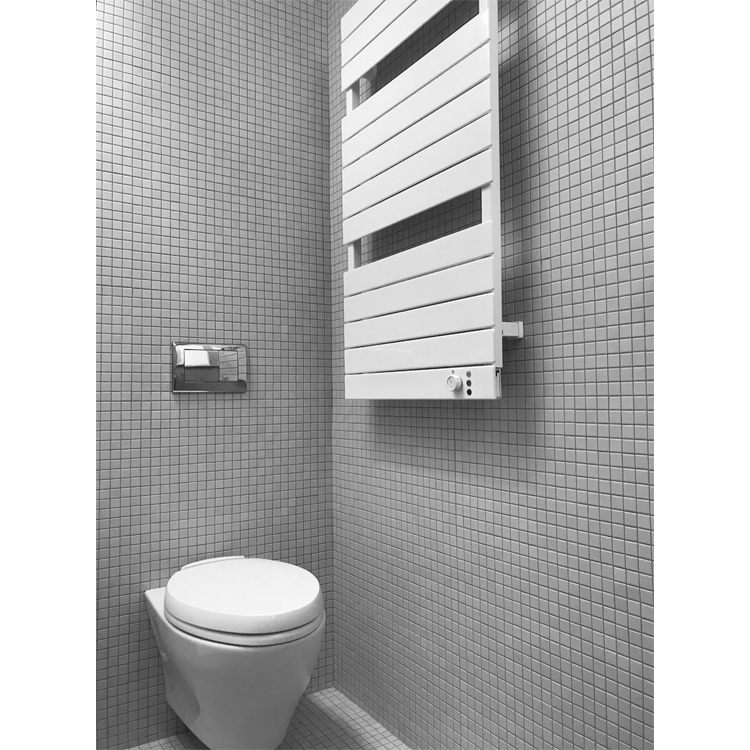 Alison Walker Brems detail photo of a wall hung toilet, tiled walls, and towel warmer